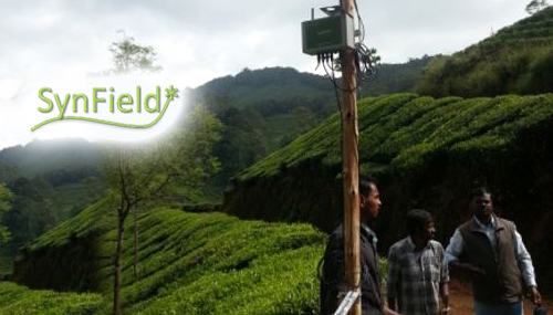 SynField Assists TATA in Coffee Diseases Prediction and Irrigation In Coorg, India