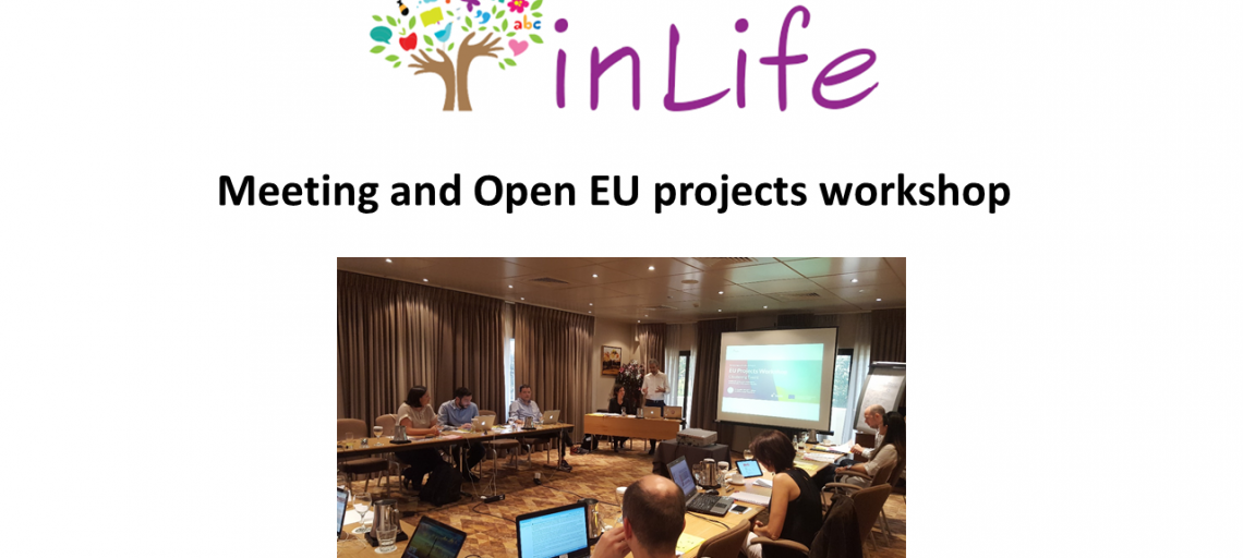InLife project meeting and workshop