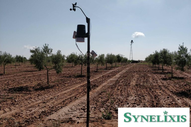 Additional SynField Installations In Toledo, Spain