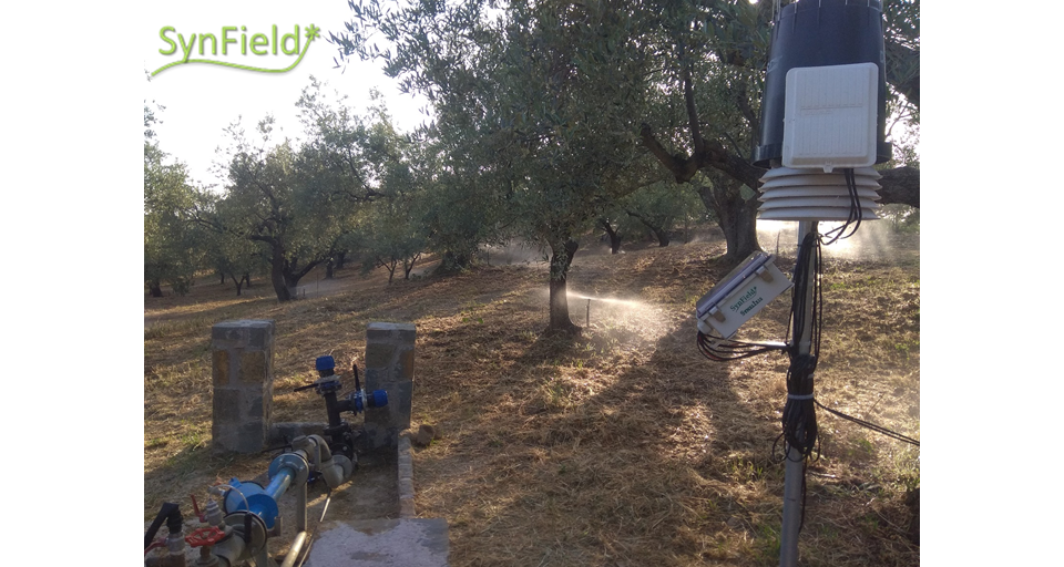 New SynField Installation in Messinia, Greece