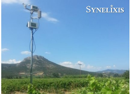 New SynField node in Nemea, Greece